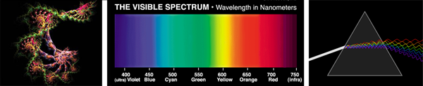 Spectrophotometer-strip.png
